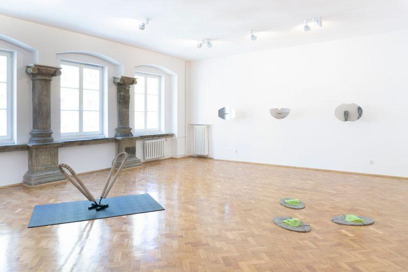 Bad Trip II, widok wystawy, 2019, Galeria Mieszkanie Gepperta